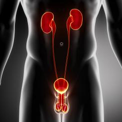 urologia-benamedic
